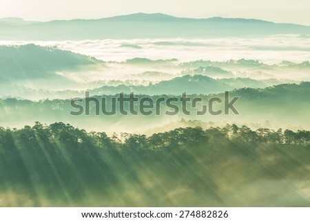 Sunrise, Fog and ray on the hill. - stock photo