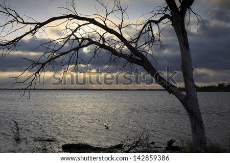 Sunrise framed by a lonely tree on Lake Hefner in Oklahoma City - stock photo