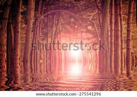 Sunrise in autumn forest and reflection on water - stock photo