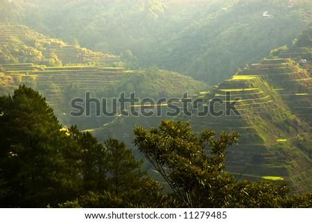 Sunrise in banaue Rice Terraces, Philippines - stock photo