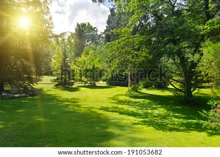 Sunrise in beautiful park.                                     - stock photo