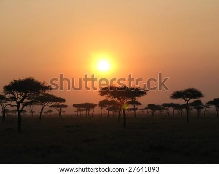 Sunrise in Masai Mara - stock photo