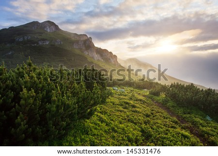 sunrise in misty mountains - stock photo