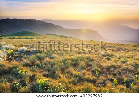 Sunrise in summer mountains. Nature composition.