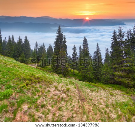 Sunrise in the Carpathian mountains. Ukraine, Europe.