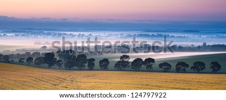 Sunrise in the Clare Valley, South Australia - stock photo
