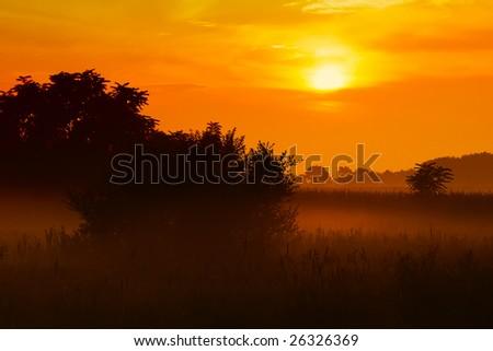 Sunrise in the fog - stock photo