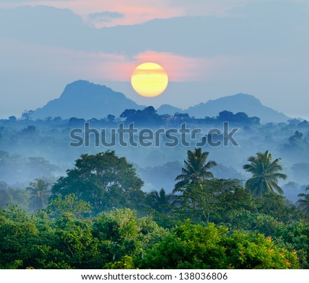 sunrise in the jungles of Sri Lanka - stock photo