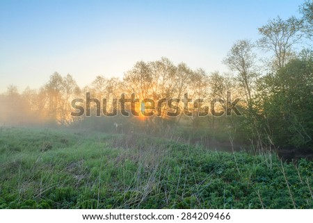 Sunrise on the river with fog. Trees in fog on the river bank in the morning. The rays of dawn sunlight illuminate the clearing with wildflowers and grass. Foggy morning. Bright fine sunrise - stock photo