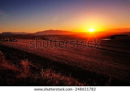 Sunrise over cultivated farmland (Cape Province - South Africa) - stock photo