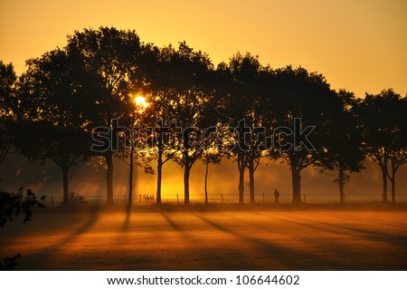 Sunrise Silhouettes of trees and a man on the edge of the misty fields at sunrise - stock photo