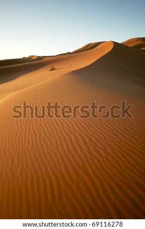 Sunrise the dunes of the Moroccan Sahara - stock photo