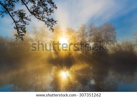 Sunrise through morning fog on a forest river, tranquil scene. Vorskla river, Ukraine - stock photo
