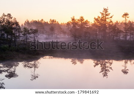 Sunrise with mist over the bog lakes