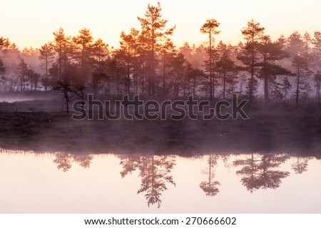 Sunrise with mist over the forest lake - stock photo