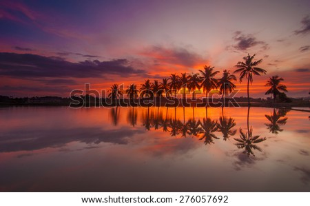 Sunrise with Reflection of tropical tree at Permatang Pauh Pulau Pinang - stock photo