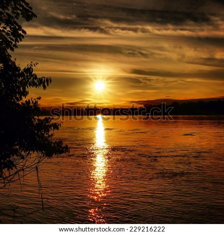 Sunset across lake making a golden path in South America, Peru, Peruvian Amazon Jungle forest. - stock photo