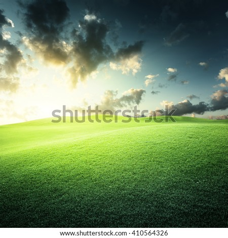 sunset and field of green grass - stock photo