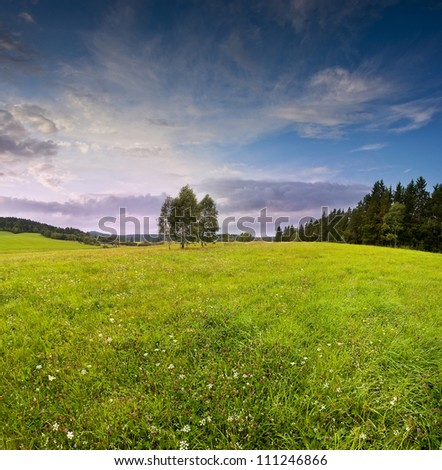 sunset and summer meadow - countryside - stock photo