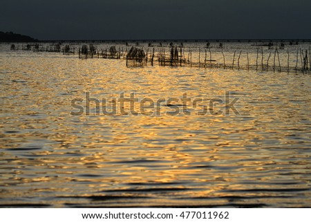 Sunset and water gold on the lake.