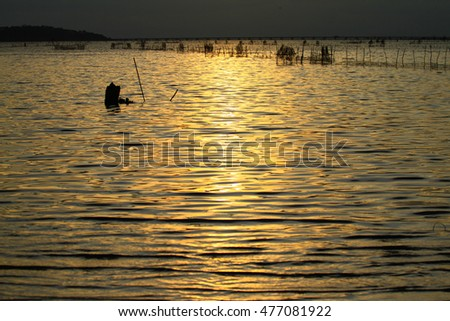 Sunset and water gold on the lake