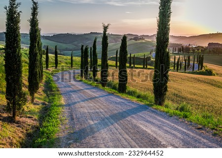 Sunset and winding road with cypresses in Tuscany - stock photo