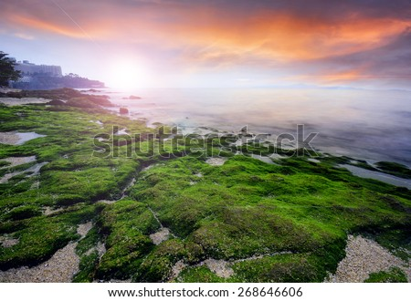 Sunset at beach,  green moss on the stone at Pattaya   famous beach in Thailand. - stock photo