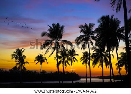 Sunset at Setiu Wetland, Terengganu, Malaysia - stock photo
