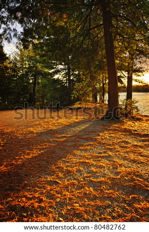 Sunset at shore of Lake of Two Rivers in Algonquin Park, Ontario, Canada