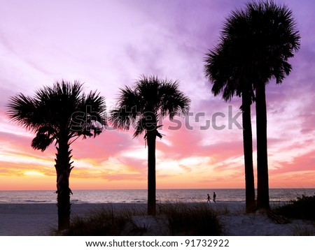 Sunset At The Beach With Palm Trees In Silhouette