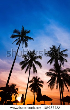 sunset beach - stock photo