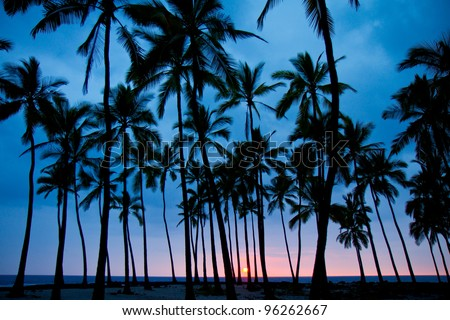 sunset - Big Island (Hawaii) - stock photo