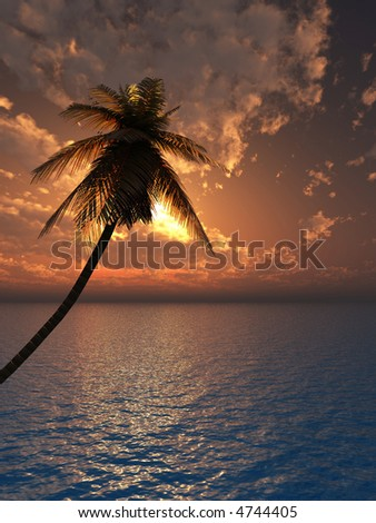Sunset coconut palm tree on ocean coast - 3d illustration.