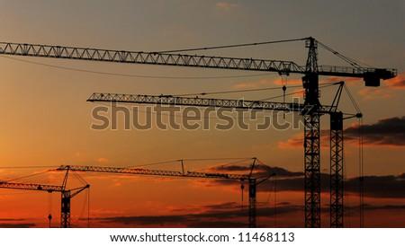 Sunset cranes - stock photo