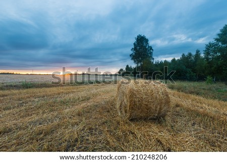 Sunset field, tree and hay bale i - stock photo