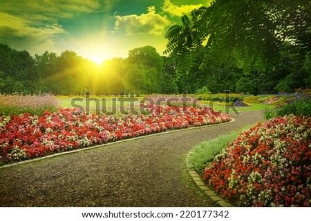 Sunset in a beautiful park - stock photo