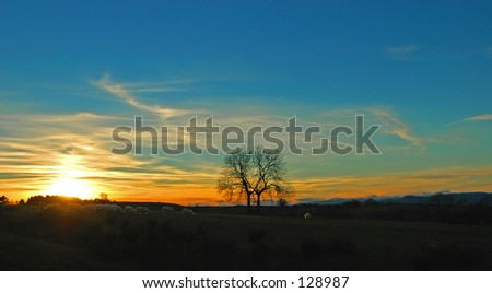 Sunset In A Meadow In The Trossachs, Scotland
