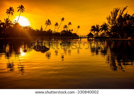 Sunset in a tropical paradise with palm trees and ocean - stock photo
