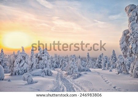 Sunset in a winterwonderland at lapland Finland HDR - stock photo