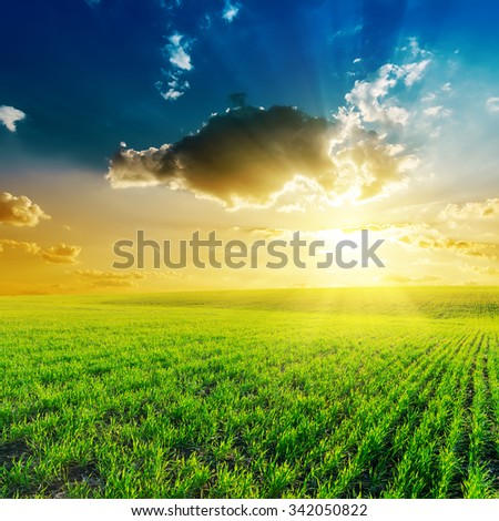 sunset in clouds and green grass field