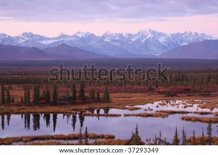Sunset in Denali - stock photo