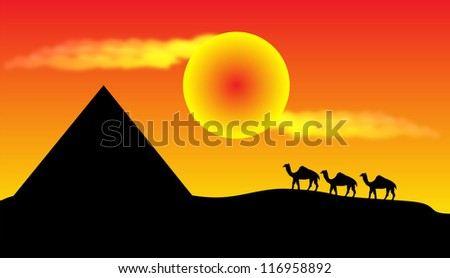Sunset in desert with camels and pyramid - stock photo