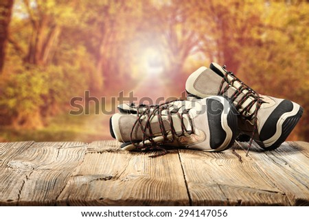 sunset in forest and table of wood  - stock photo
