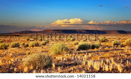 Sunset in Kalahari Desert, Namibia - stock photo