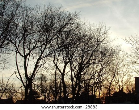 sunset in March - stock photo