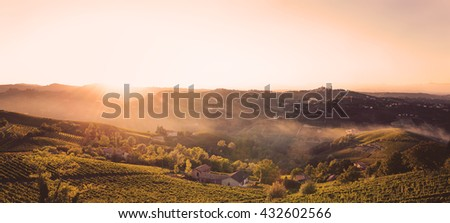 sunset in the fields with vineyards - stock photo