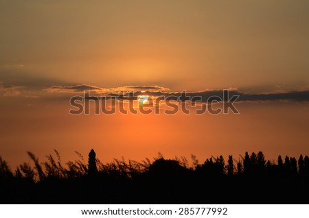 Sunset in the meadow - stock photo