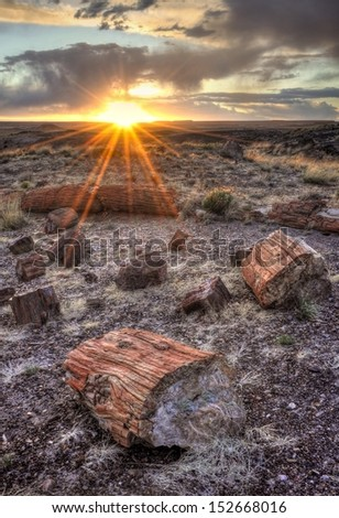 Sunset in the Petrified Forest Petrified Forest National Park, Arizona. - stock photo