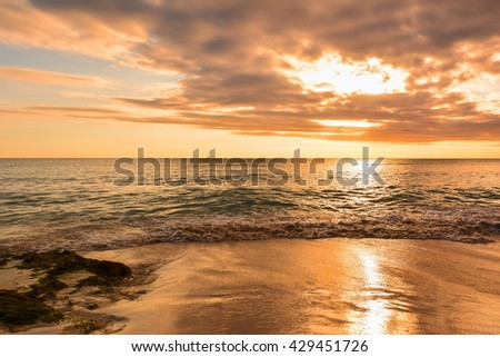 sunset in tropical island of Santo Domingo to Bayahibe with white sand and coconut trees for complete relaxation punta cana. sunset red filter