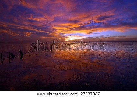 Sunset in wetland